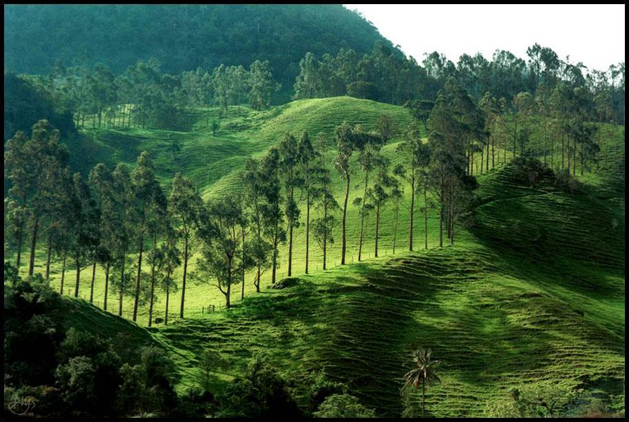 andes mountain range. the Andes mountain range: